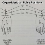 12 Pulse Positions